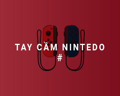 Tay cầm chơi game Nintedo Switch